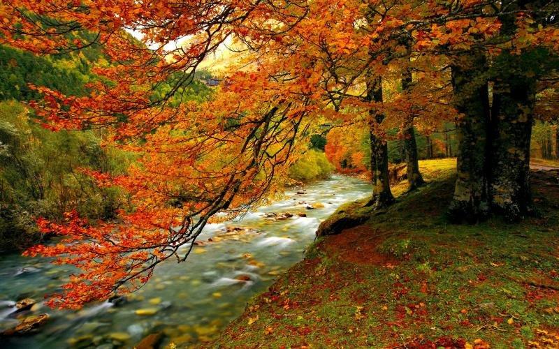 A k zel t t l avagy az sz legszebb pillanatai egy - Nature ka wallpaper ...